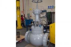 Globe_Control-Valve_12_1500-ringo-valves