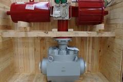 Top-entry-2500#-ringo-valves