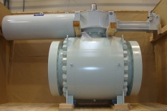 Ball_valve_24_900_HIPPS-ringo-valves