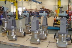 Nuclear-Forged-Gate-and-check-ringo-valves