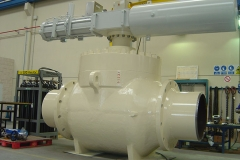 Top-entry-36''-1500#-ringo-valves
