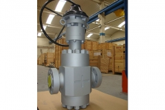 Gate_5000_psi-ringo-valves