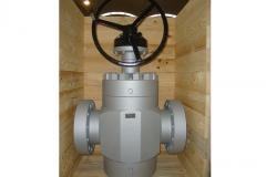Gate_7-1-16_5000-ringo-valves